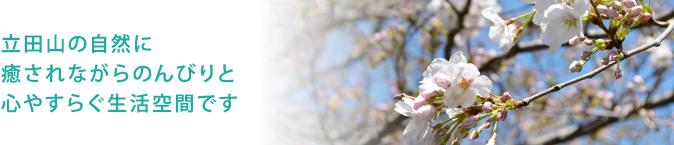 龍田山の自然に癒されながらのんびりと心やすらぐ生活空間です